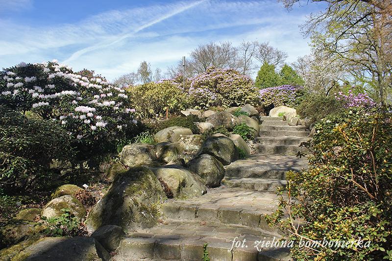 Ogród Botaniczny Bremen