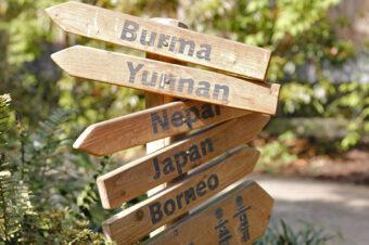 Botanika Bremen – wędrówka przezazjatyckie krajobrazy
