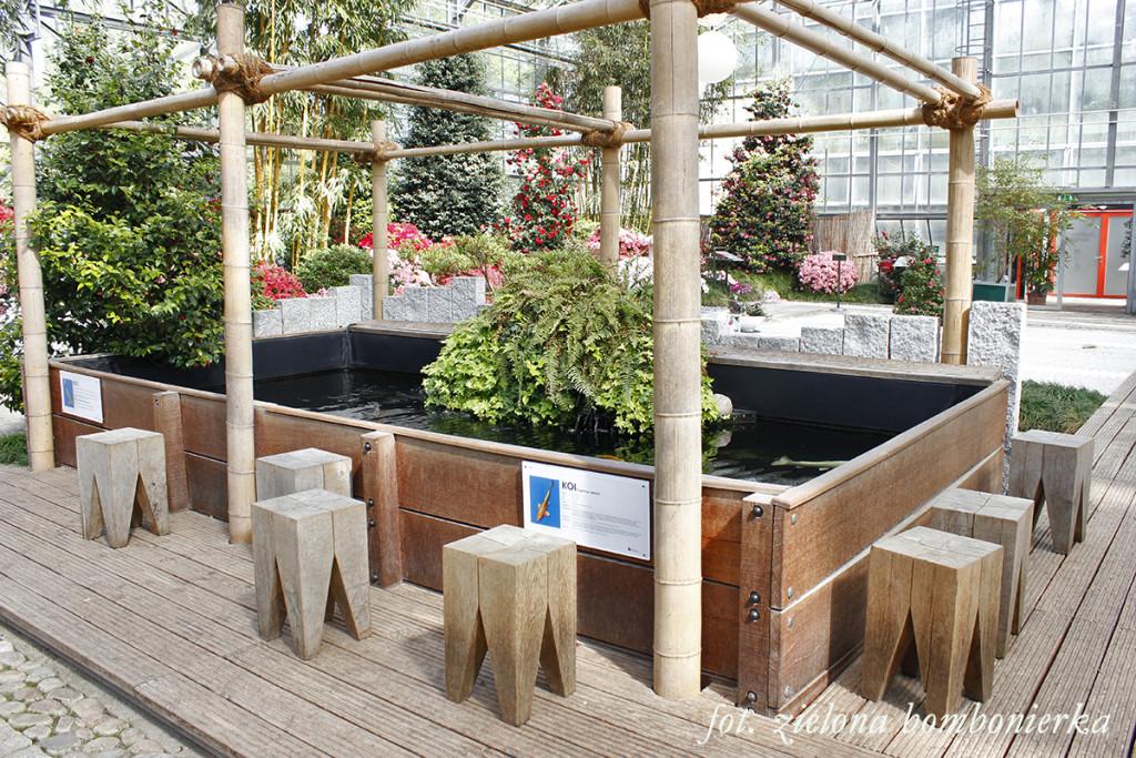 Ogród japoński karpie koi