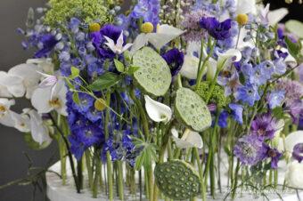 Gardenia 2016 – florystyka