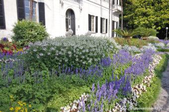 Ogród wVarennie. Villa Monastero.