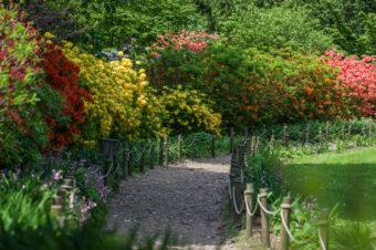 Arboretum wWojsławicach – ulubiona miejscówka nietylkonamajówkę.
