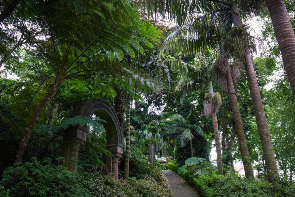Ogród Tropikalny Monte Funchal