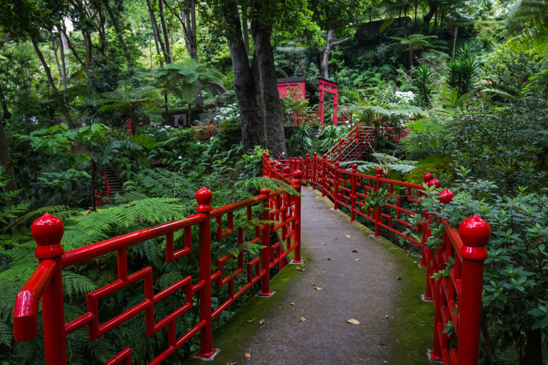 Rośliny tropikalne, sztuka, orient iazulejos, czyli Monte Palace Tropical Garden Madera.