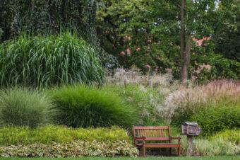 Fotografowanie ogrodów. Jak opowiadać historie aparatem?