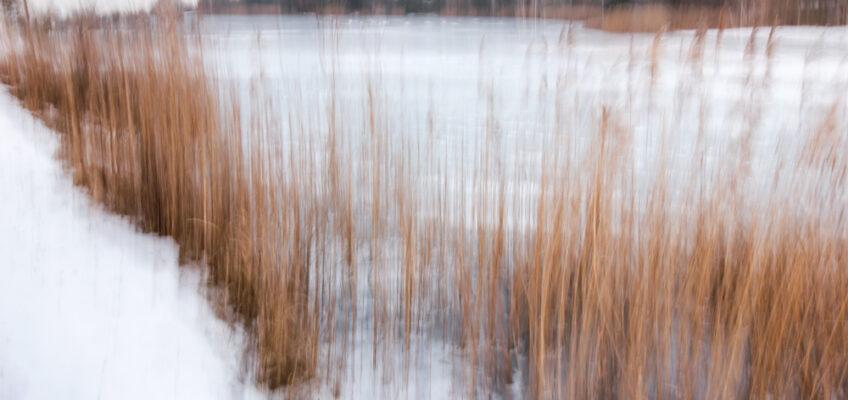 Zimowa impresja. Jak zrobić artystyczną zimową fotografię?