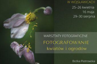 """Warsztaty fotograficzne """"Fotografowanie kwiatów iogrodów"""""""